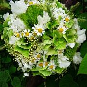 Klein ist fein! Hortensien, grüne Nelken, Kamille und Wicken mit Natur gebunden
