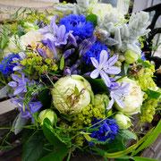 Der Sommer lässt Grüßen! Agapanthus, Rosen, Kornblumen und Frauenmantel
