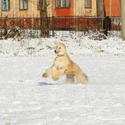 """""""Восторг от первого снега"""""""