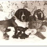 Дана со щенками и маленькая Делли