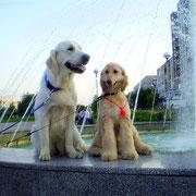 Далиса и Чойс на фонтане