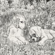 Рисунок Алексеевой Елены (маленькая Чойс и Смайлик)  :)