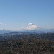 湘南平からの富士