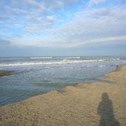 Strand Oud dorp 19 januari 2014