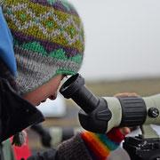 Wattführung mit Birte Weinbecker alias Regenpfeifer-Tour ist immer ein Erlebnis