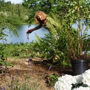 Im Garten ist Mamas Kreativität und Kampfgeist gefragt.