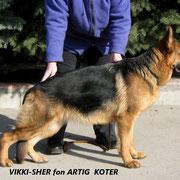 Vikki-Sher