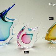 トロピカルフィッシュ