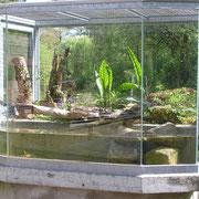 zeitweise mit einer Europäischen Sumpfschildkröte belegt