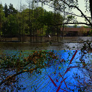 Inselbegabung, 100 x 200 cm, Fujiflex auf Aludibond, 2014