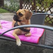 Ich hatte sogar meinen eigenen Liegestuhl!
