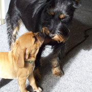 Calla & Xaver