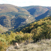 Cantobre depuis le Causse du Larzac