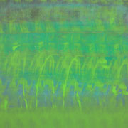 A travers vert 60 x 60 cm