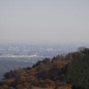 岩茸石山山頂から高水山越えでスカイツリーが見えた