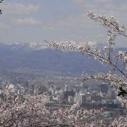 花見山公園の頂上からの眺め