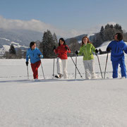 Flachau winter activities - snowshoeing