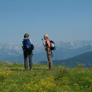 Hiking in Flachau - Province of Salzburg