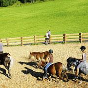 Paard rijden - vakantie op de boerderij in Flachau