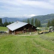 De bergweiden van Steinbachgut in Flachau