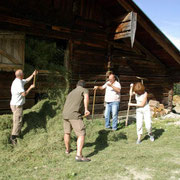 Our Alpine Hut - Holiday on the Farm
