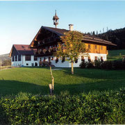 Welcome to the Steinbachgut in Flachau - A Farm Holiday