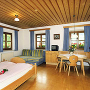 Steinbachgut Flachau - Our Apartments