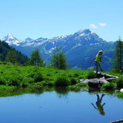 Hiking in Flachau - Province of Salzburg