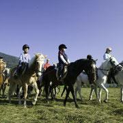 Paardrijden - Zomer op een boerderij in Flachau