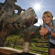 Flachau in de zomer – vakantie op de boerderij