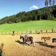 Vakantie op de boerderij Flachau – paard rij plaats