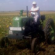 Das Schatzi mit seinem alten Traktor.
