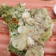 Bergkristallgruppe mit Chlorit – Val Russein – Alfons Popp