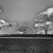 Münsterland - Leica Master Shot