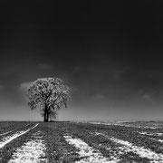 vorm Horizont - Leica Master Shot