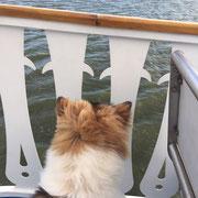 Sie genießt den Wind