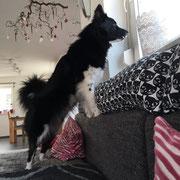Delisha ist ein wenig neugierig
