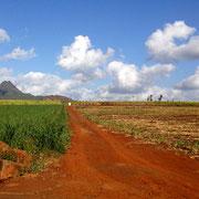Rostige Wege (Mauritius)