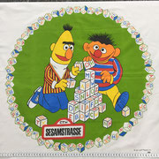 Ernie & Bert Panel