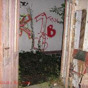 Blick aus dem Schuppen direkt auf die Hauswand gegenüber.