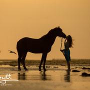Harmonische Partnerfotos von Mensch & Pferd halten die besondere Beziehung der Beiden fest.
