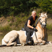 Ob Fjordpferde, Barockpferde oder Warmblüter: In der Showreitschule sind alle Pferderassen willkommen!