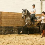 Corinna Hengefeld ist eine absolute Pferdefrau und immer mit Freude bei der Arbeit dabei!