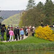 Die Pferde zogen die Besucher der Landpartie regelrecht an.