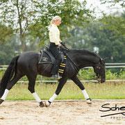 Die solide Grundausbildung, wie z.B. Aufwärmen und Rückentraining, sind in der Showreitschule besonders wichtig. Sie ermöglicht ein langes, gesundes Pferdeleben :)