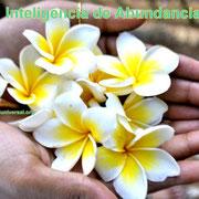 INTELIGENCIA DE ABUNDANCIA - PROSPERIDAD UNIVERSAL