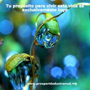 DESPERTAR DE LA CONCIENCIA-  PROSPERIDAD UNIVERSAL