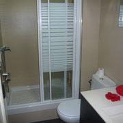 baño peqiçueño con ducha
