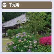 5,000本のあじさいが植えられ、「あじさい寺」として親しまれている龍護山千光寺(曹洞宗)は、耳納北麓の山辺の道(旧日田街道)沿いに、宮園地区から山あいに入ったところにあります。