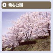 ピクニックやキャンプにはもってこいの公園です。また、歴代藩主の花見の場所といわれ、春は約500本の桜が咲き誇り、毎年花見客で賑わいます。夏目漱石も久留米を訪れた折りここを訪れ、句をと詠んだと言います。